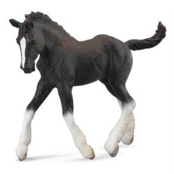 Shire Horse Foal - Black
